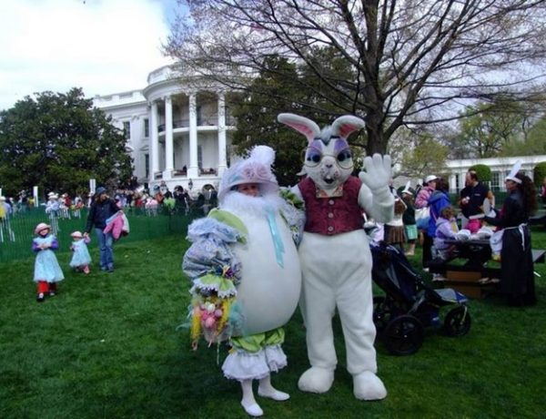 You Don't Want to Miss The 2018 White House Egg Roll 2018 White House Egg Roll You Don't Want to Miss The 2018 White House Egg Roll Get for the Amazing White House Egg Roll 2018 1 600x460