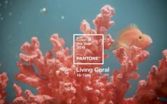 Pantone Anounces Living Coral as the 2019 Color of the Year